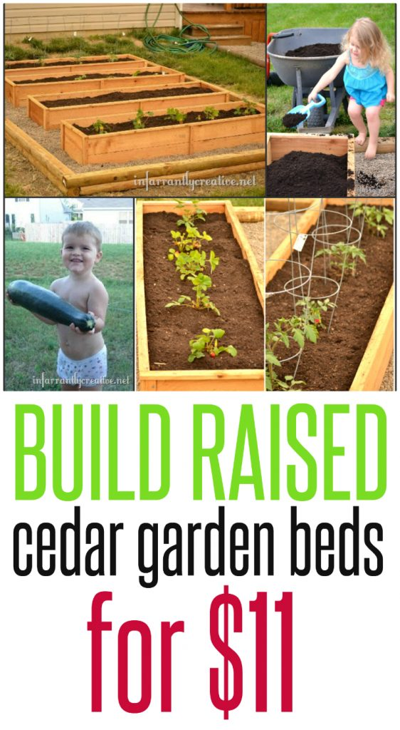 Building Plans for raised garden Beds