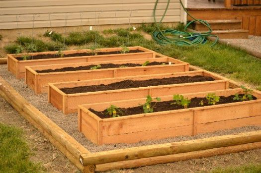 cedar_raised_garden_beds