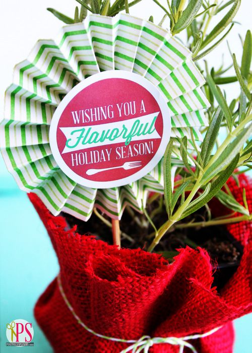 rosemary-herb-holiday-gift-1