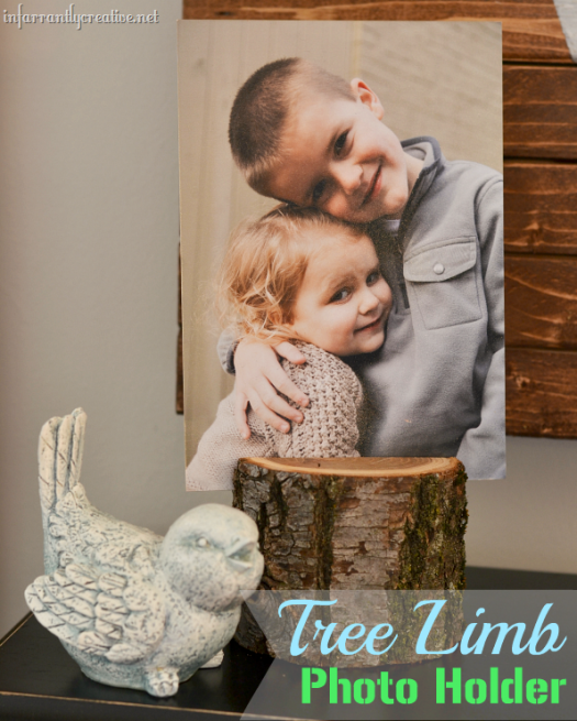 tree limb photo holder