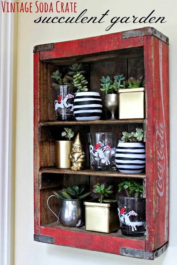 Vintage Soda Crate Shelf With Succulent Garden