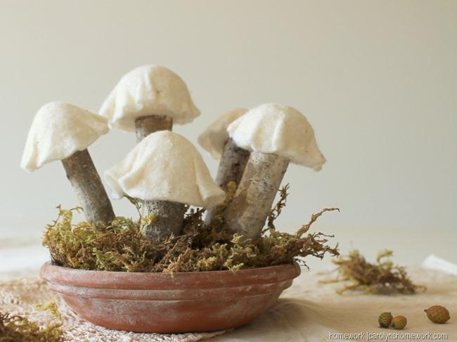 Roadkill Rescue cute mushrooms