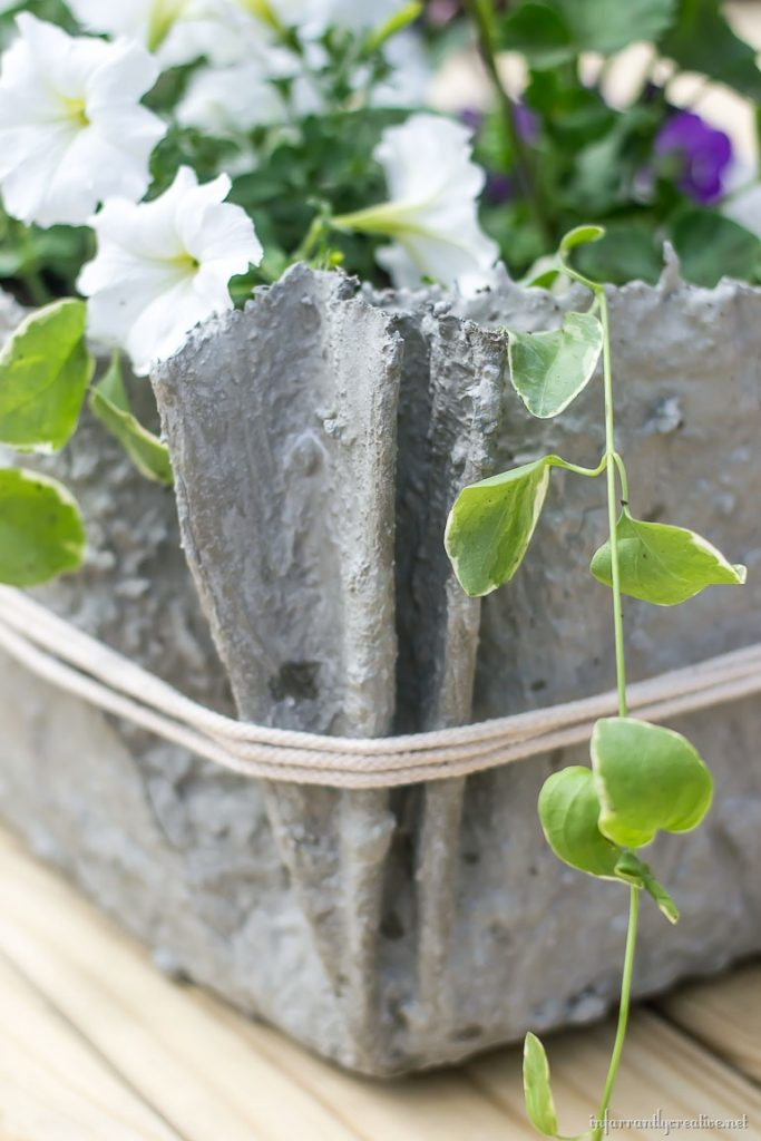Drop Cloth And Cement Planters
