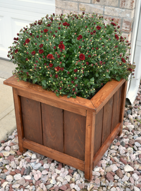 cedar_planter_with_mums